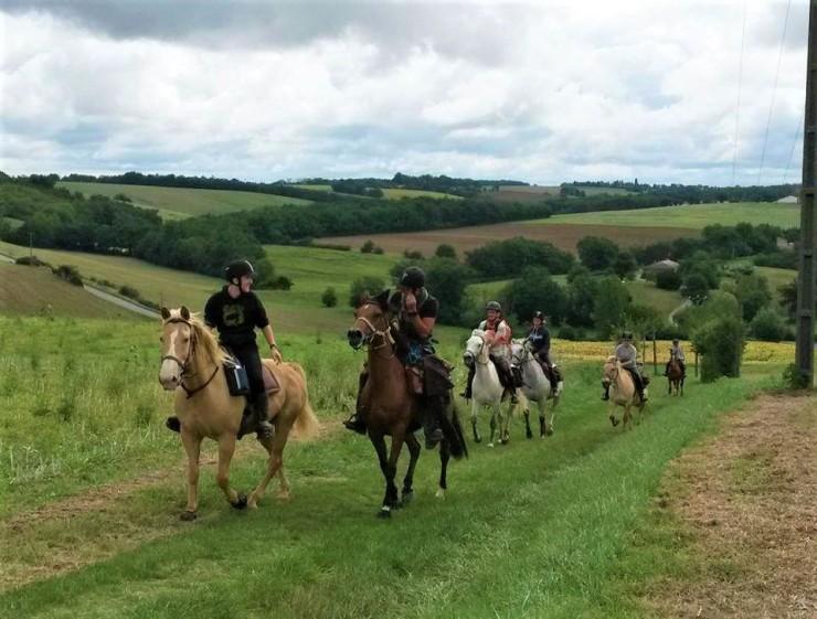 randonnée à cheval et à poney à toulouse