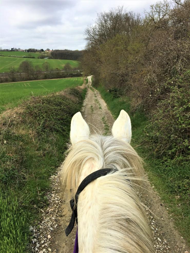balade à cheval à toulouse