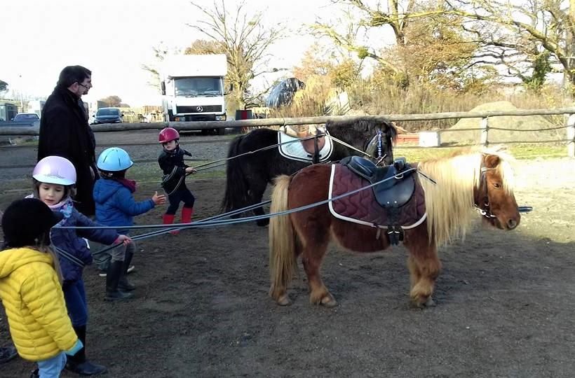 cours de poney à montrabé ALERT Association de Loisirs Équestres en région Toulousaine