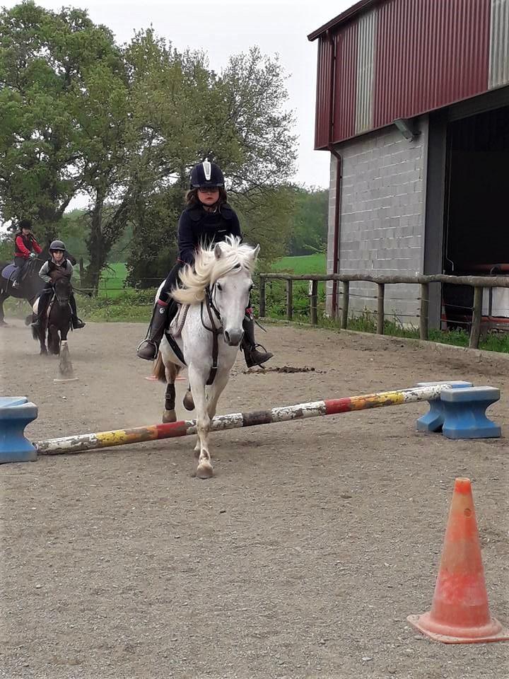 poney club et centre equestre toulouse ALERT Association de Loisirs Équestres en région Toulousaine