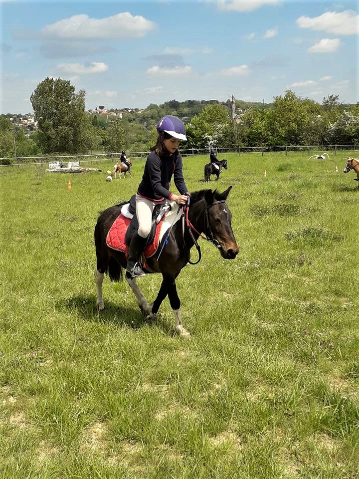 poney en cross a toulouse