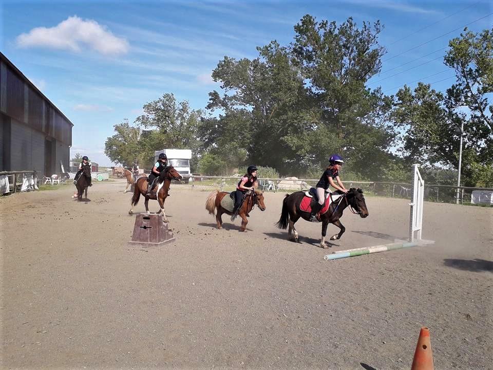 cours de poney pour enfant a toulouse ALERT Association de Loisirs Équestres en région Toulousaine