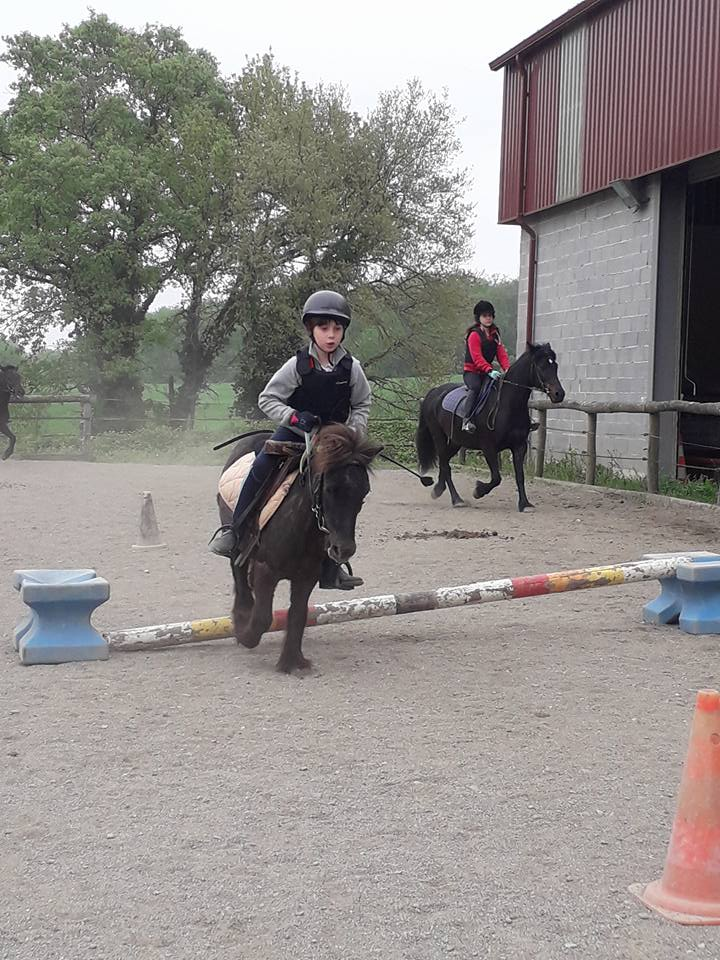 centre equestre et poney club a montrabe ALERT Association de Loisirs Équestres en région Toulousaine